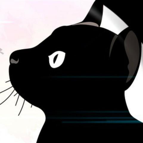 甘えん坊猫✖飼い主