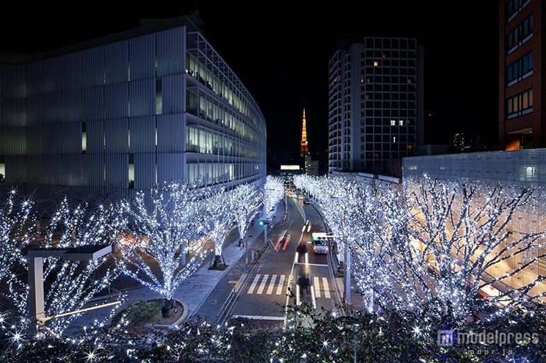 """""""五感で感じるクリスマス""""がテーマ 120万灯の2色のイルミがライトアップ"""