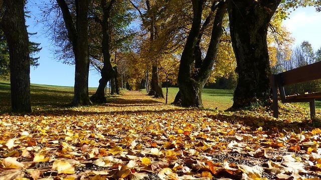 モードな雰囲気が楽しめる秋ネイル3種類!大人ぽい雰囲気が多く、落ち着いたカラーが魅力的♪