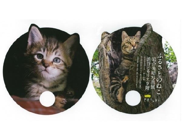 岩合光昭さん特製のねこ型うちわを1万名様にプレゼント!可愛いうちわで暑い夏を乗り切ろう!