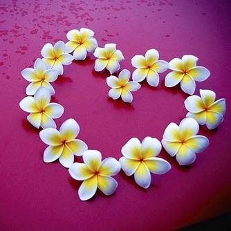 ハイビもいいけどプルメリアもね♡『プルメリアネイル』でハワイアンな夏ネイルをGET♡