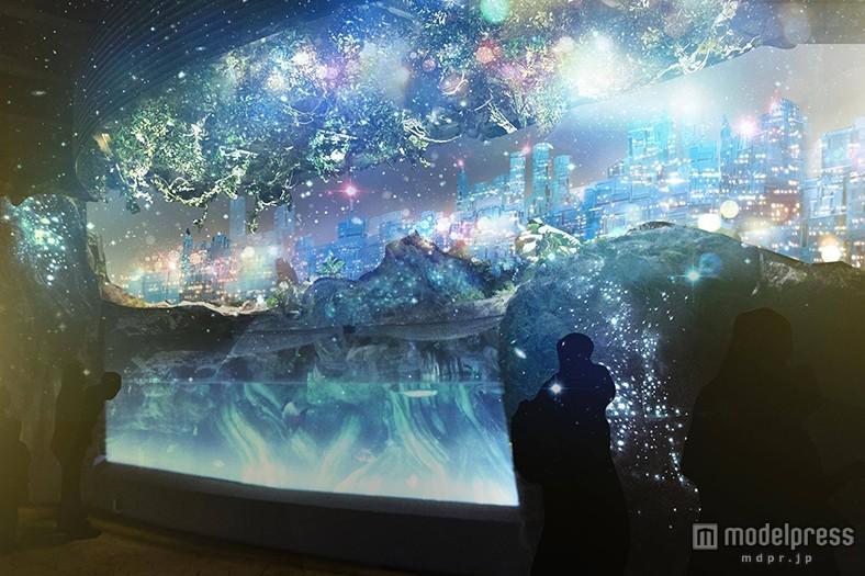 幻想的な氷の世界で大人デート 冬の水族館の新たな楽しみ方
