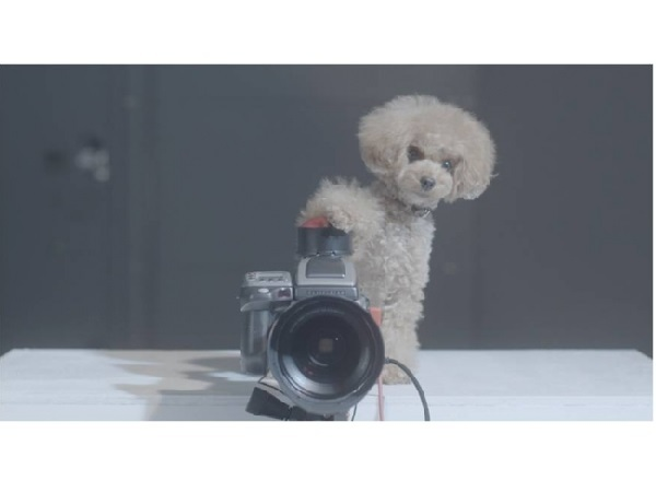 もしも愛犬があなたの写真を撮ったら?ペットが映し出す家族の笑顔を描いたウェブ限定ムービーが公開