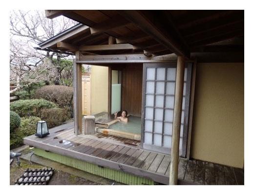 神戸蘭子のニュース画像
