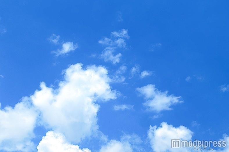 嵐 みちのニュース画像