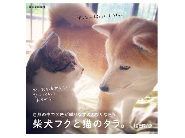 心が凝っている人は必読?! 元迷い猫タラと柴犬フクの生活にほっこり癒される、小さな写真集に胸キュン♡