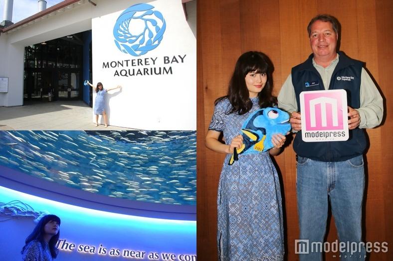 「ファインディング・ドリー」舞台のひとつ!年間180万人来場の観光スポット「モントレーベイ水族館」<ピクサー・アニメーション・スタジオ取材Vol.8>