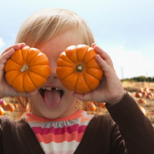 秋は【美肌食材】の宝庫!知っておきたい、旬の食材<栄養素別6選>