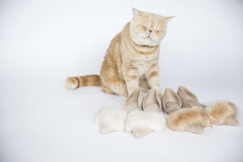"""インスタで人気の猫""""マッシュ""""のもふもふを再現 ファーパンプスが悶絶の可愛さ"""