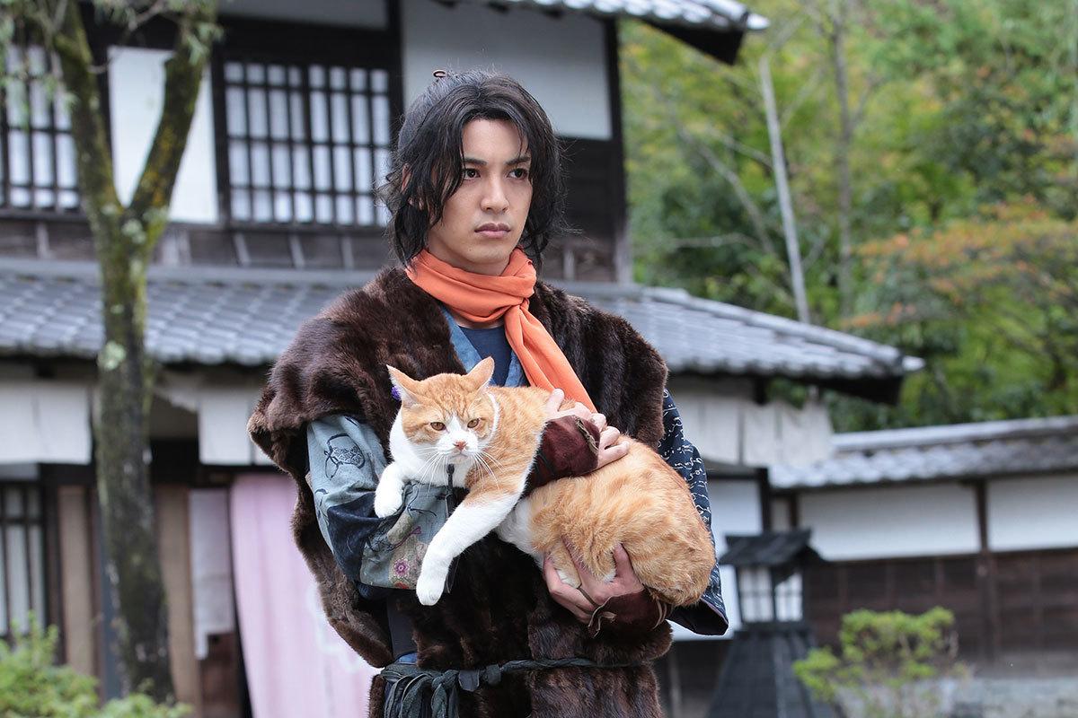 大野拓朗、映画初主演!「猫侍」制作チームの新たな猫◯作品『猫忍』