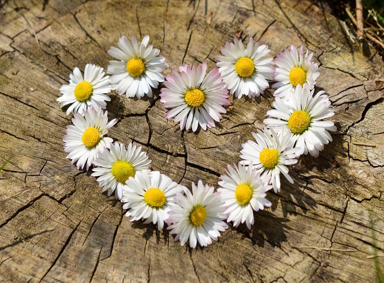 恋愛は感情表現!素直な気持ちを伝える方法