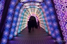 音と光のファンタジーがテーマの華やかイルミが登場 新たな試みも