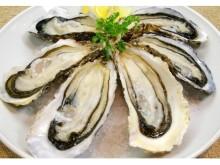 秋は牡蠣の季節!都内で美味しい生牡蠣が食べられるお店3つ