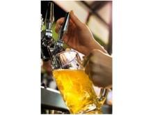 秋のビアガーデンも乙なもの、この夏逃した方もまだ間に合うさんまや松茸とビールはいかが?