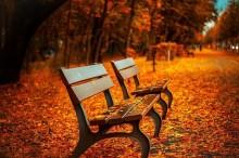 夏の終わりには秋ネイル♪一足早く季節先取りで、秋のファッションを楽しんじゃいましょう