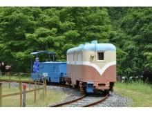秋の小旅行にも最適! 日本の魅力が再発見できる旅3選