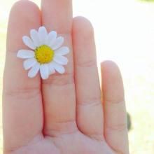 華やかな*デイジーが夏らしい♡「きゅん」が詰まったDEISYネイルデザイン*