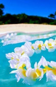 夏の好感度ひとり占め♡涼しげに咲く白いフラワーネイル