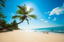夏に向けて準備したい!海をイメージしたリゾートネイル