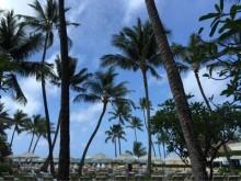 夏はハワイアンネイルでリゾート気分♪ハンドネイルデザインを集めました!