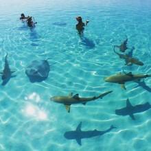 ゆらゆら綺麗な海のよう。人気の「ドロップネイル」をセルフネイルでも楽しみたい!