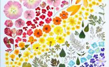 """身の回りのモノで鮮やかな""""虹色グラデーション""""を表現したアートが美しい!"""
