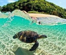 キラキラ輝く海みたい♪夏ネイルの本命『ドロップネイル』の作り方動画&デザイン画像まとめ