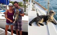 ニャンコと一緒に世界の海を旅するカップルが羨まし過ぎる!