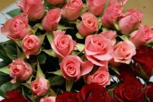 花の女王様といえばやっぱりコレ♪【ローズネイル】が初夏の足もとを印象付ける!!
