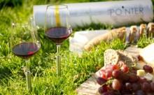アウトドアにぴったり!地面に挿せるワイングラスが便利すぎる
