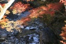 この秋、行ってみませんか?紅葉の名所のアニメ聖地!