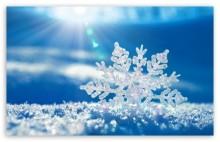 """冬の魔法に♡少し早い""""雪の結晶""""モチーフネイル18選【ウィンターネイル】"""