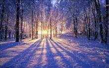 冬だからこそネイルでも冬を楽しむ♡雪の結晶ネイルまとめ