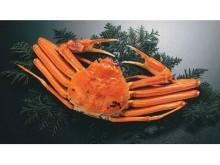 新橋にて、水揚げされたばかりの蟹を堪能!「鳥取かに小屋」がデジキューBBQガーデンに限定出店