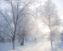 寒〜い季節にぴったり!♡雪のモチーフを使ったネイルまとめ2015〜2016冬♡