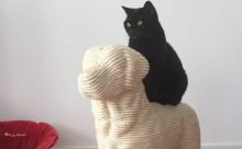 """猫のストレス解消に!ワンコのオブジェ風""""爪とぎ""""が面白い"""