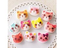 「ニャシュマロ」ファンは見逃せない!!超モテ猫・記念レア猫たちを集めたセット商品の予約販売がスタート