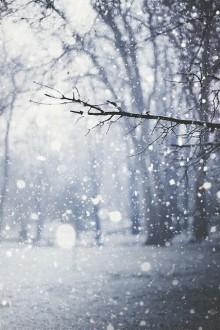 冬らしくて可愛らしい♡繊細な雪の結晶をあしらったネイルを取り入れよう!