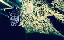 クールなヒョウが目印!音に反応するエレクトロニックなマスクが海外で話題