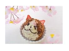 東京ソラマチと「にゃらん」のコラボ第四弾!桜モチーフのスイーツが可愛すぎるにゃん