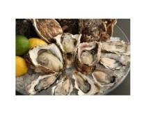 生牡蠣が全7種類1ピース300円のバリュープライス!シャンパンとともに牡蠣の食べ比べはいかが?