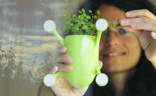 狭いお部屋でも観葉植物を飾りたい☆窓にペタッと貼れるプランターが便利
