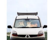 愛車の中からワンちゃんが「おかえりなさい」?!車いっぱいの駐車場でも見つけやすいサンシェードで、暑さも吹きとばそう!
