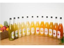 コールドプレス製法!「SHUGAR COLD PRESS」が噛める果肉の果実酒にリニューアル‼