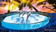 ハワイアンな夏限定イルミを点灯 神戸の水族館が幻想的な空間に