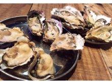 天然岩牡蠣など牡蠣6種類を食べ比べできる新メニューと日曜限定・牡蠣食べ放題キャンペーンが「牡蠣とシャンパン 牡蠣ベロ渋谷店」に登場