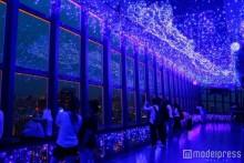 """東京タワーに""""天の川イルミ""""が輝く LED16万個の幻想的な七夕空間にため息"""