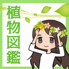キュン死必死!映画「植物図鑑」の魅力総まとめ!