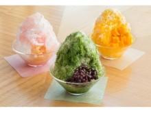ふわふわ氷の中にはアイスクリームも!2種のソースで味の変化を楽しめる、ホテルこだわりのかき氷で贅沢気分を満喫♡