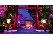 京都・下鴨神社で神秘的な光のアート空間を心静かに感じる☆大切な人と今夏に行きたいロマンティックな夜イベント